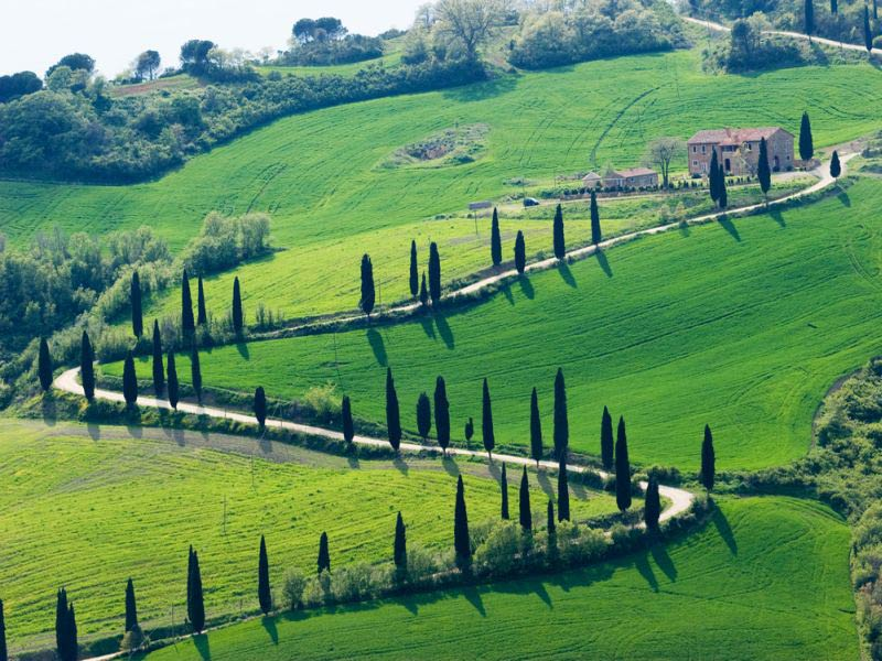 val_d__orcia.jpg